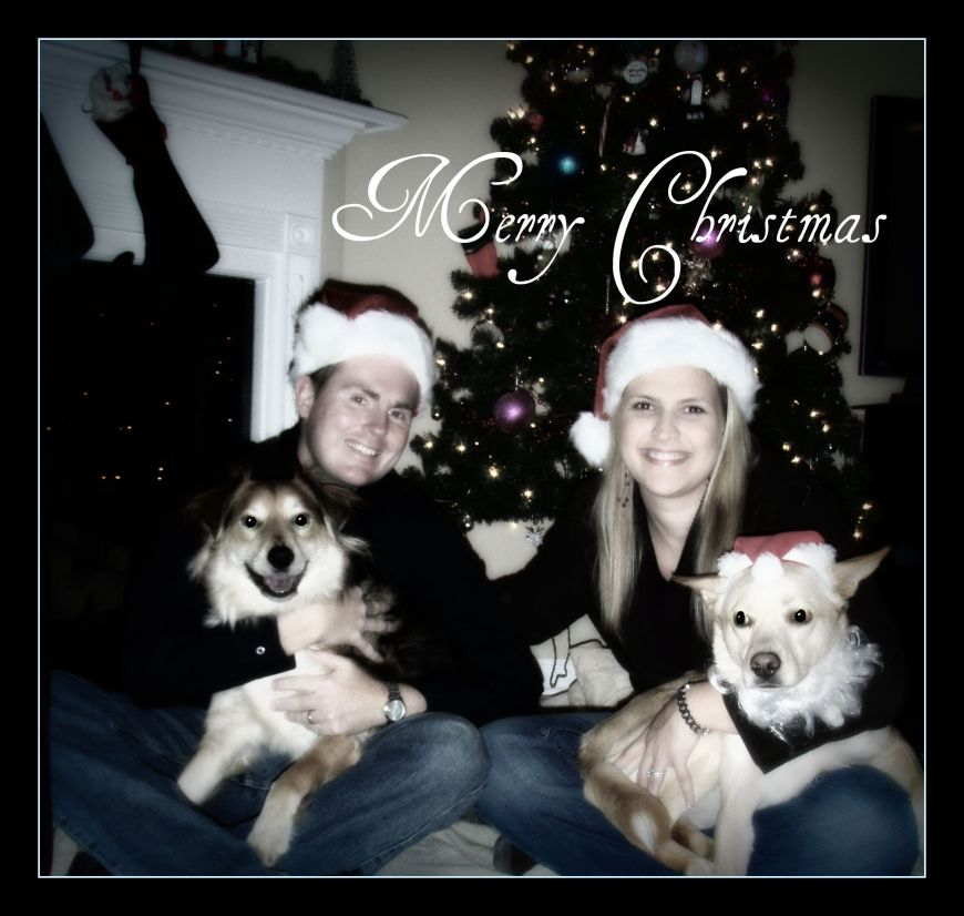 christmas-pictures-2